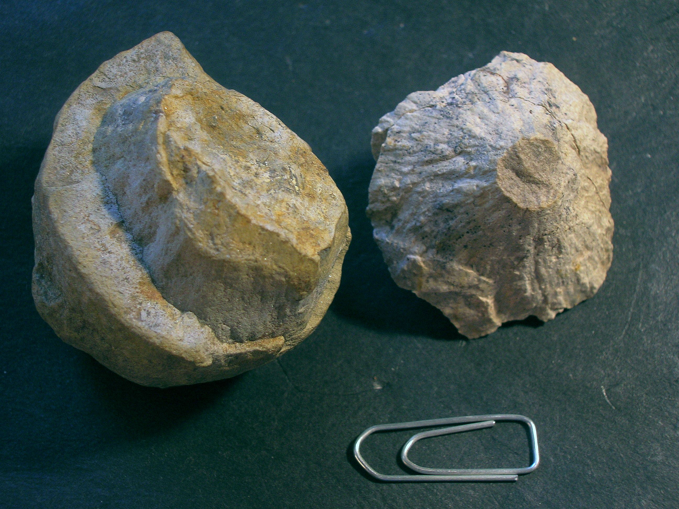 comparicon of shattercones Crooked Creek meteorite crater and Lake Tuettensee meteorite crater Chiemgau impact