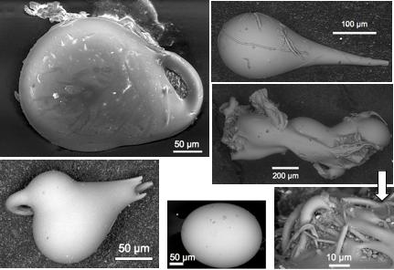 Chiengau impact microtektites SEM